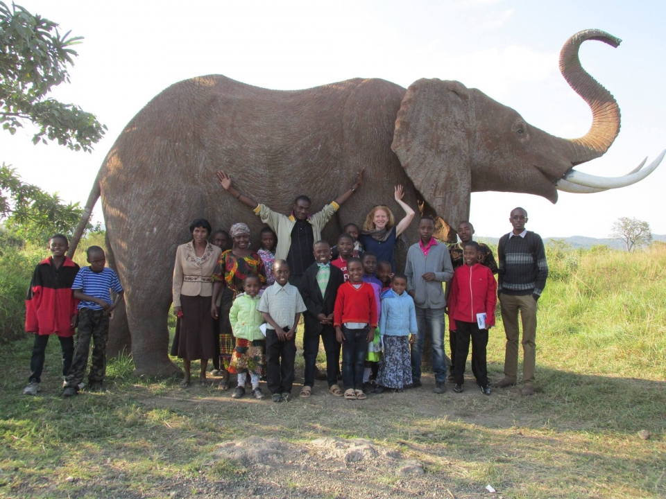 group and elephant